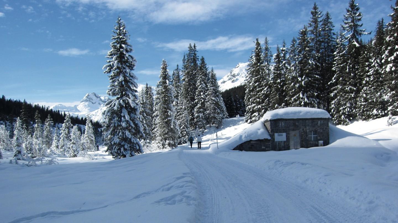 Winterwandern in Lech.